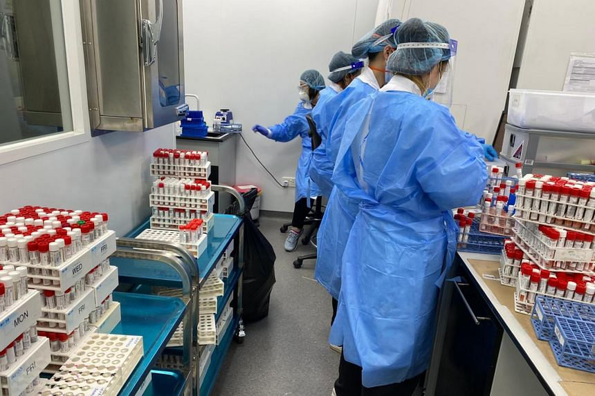 Parkway Laboratories staff processing Covid-19 swabs on May 21, 2021.