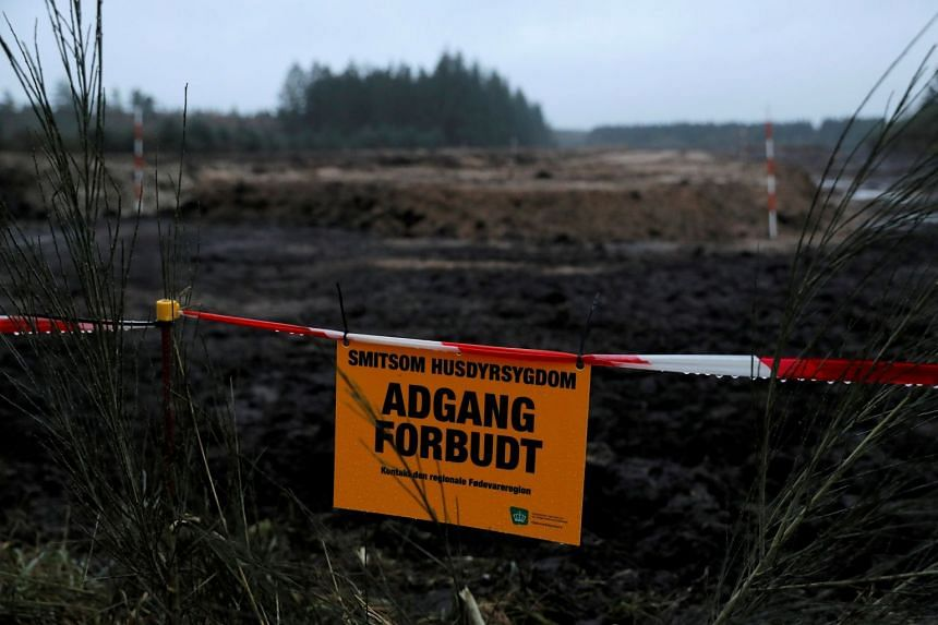 A sign prohibiting entry hangs by burial pits that contain culled mink in Karup, Denmark, in December 2020.