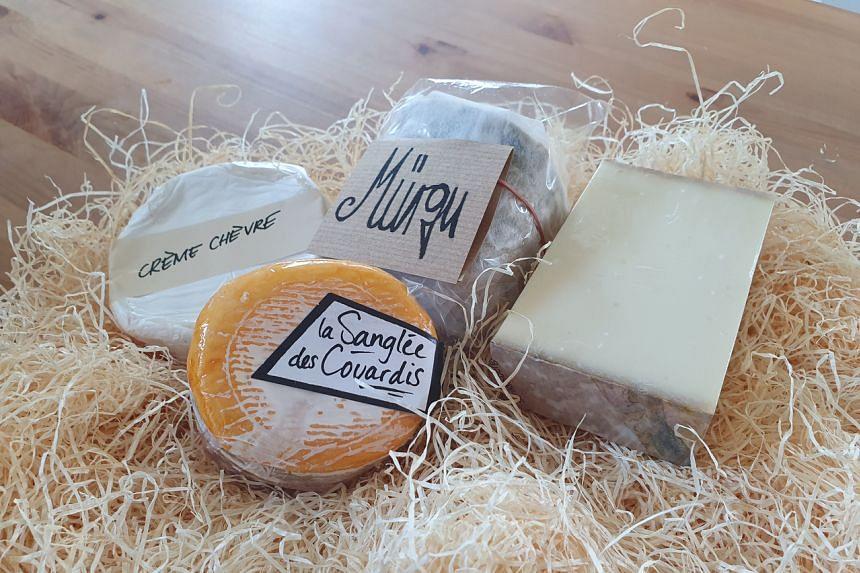 Jumi Cheese in Switzerland.