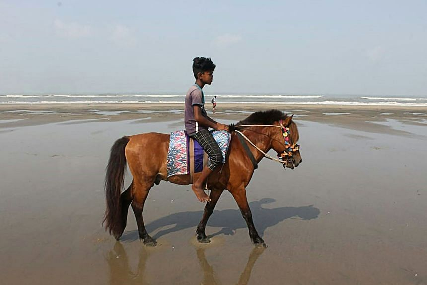 At least 21 horses out of up to 90 used for tourists at the Cox's Bazar beach died over the past month while others were emaciated.