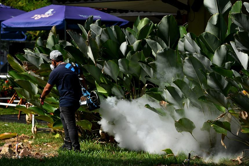 Over 2,700 dengue cases have been reported since the start of this year and there are currently 22 active dengue clusters.