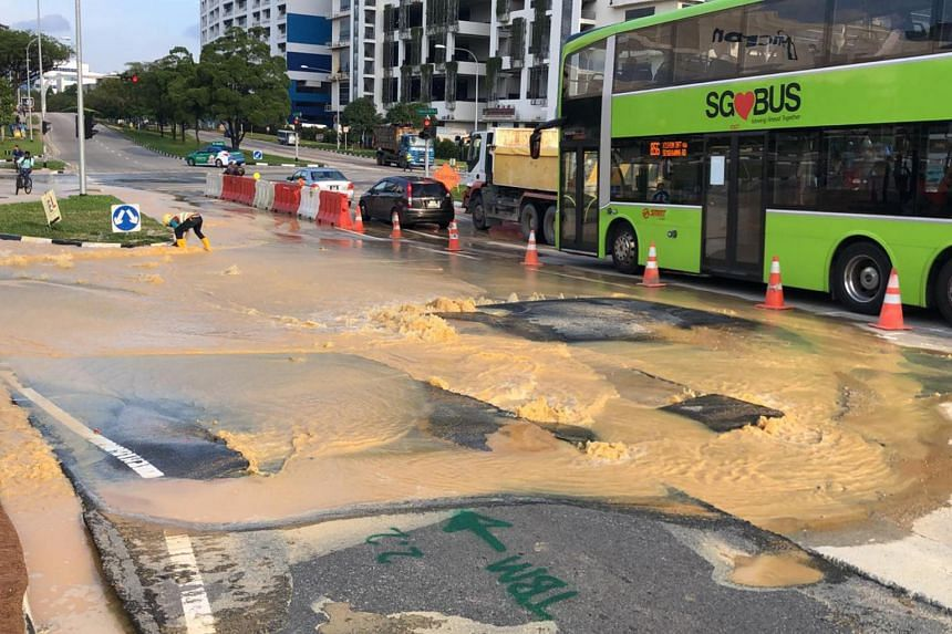 Tong Shing Contractors damaged a water main while carrying out road works at Admiralty Road West that caused massive water loss and affected three traffic lanes in December 2018.