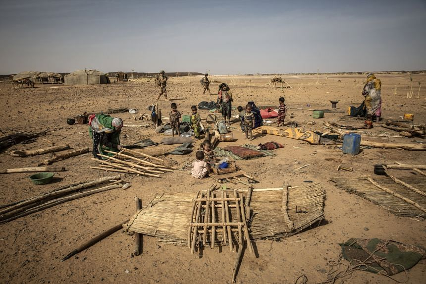 Saturday's attack took place in the Liptako-Gourma region (above), a border area between Mali, Niger and Burkina Faso.