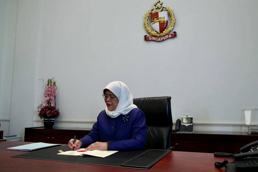 As custodian of the country's past savings, all proposals on borrowing must be carefully scrutinised by President Halimah Yacob.