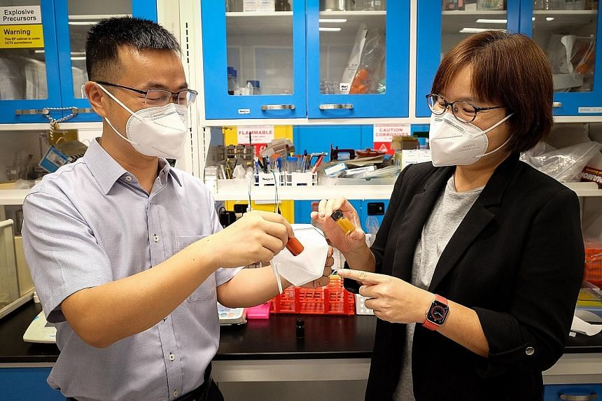 Associate Professor Liu Zheng (left) and Professor Lam Yeng Ming with the new mask and bottles of copper oxide nanoparticles - the mask is coated with a layer of copper oxide which can damage the DNA of key cell structures in bacteria.