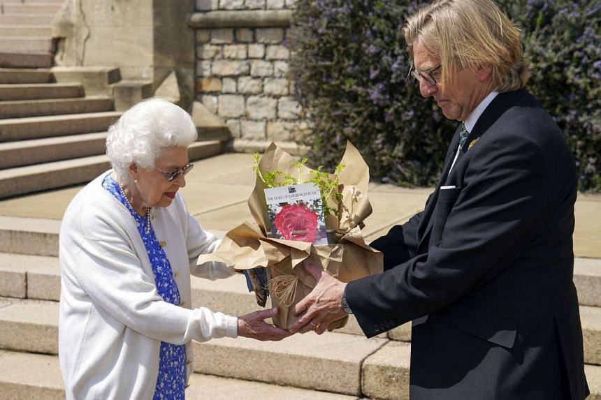 Britain's Queen Elizabeth II is presented with the rose at Windsor Castle.