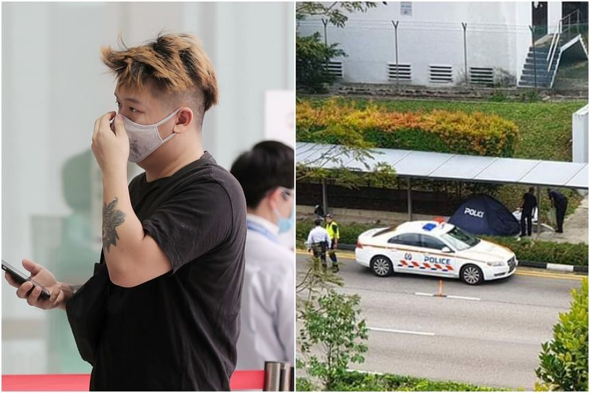 Sy Yong Da crashed into a sheltered footpath in Farrer Park and left Ms Domielyn Santos Ocampo for dead.