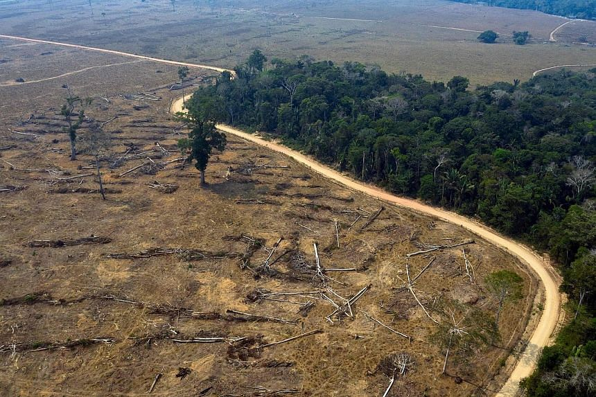 An August 2019 photo showing burnt areas of the Amazon rainforest in Brazil. A 2018 paper said the Amazon generates about half of its own rainfall by recycling moisture through evaporation and transpiration. But deforestation could cause the cycle to