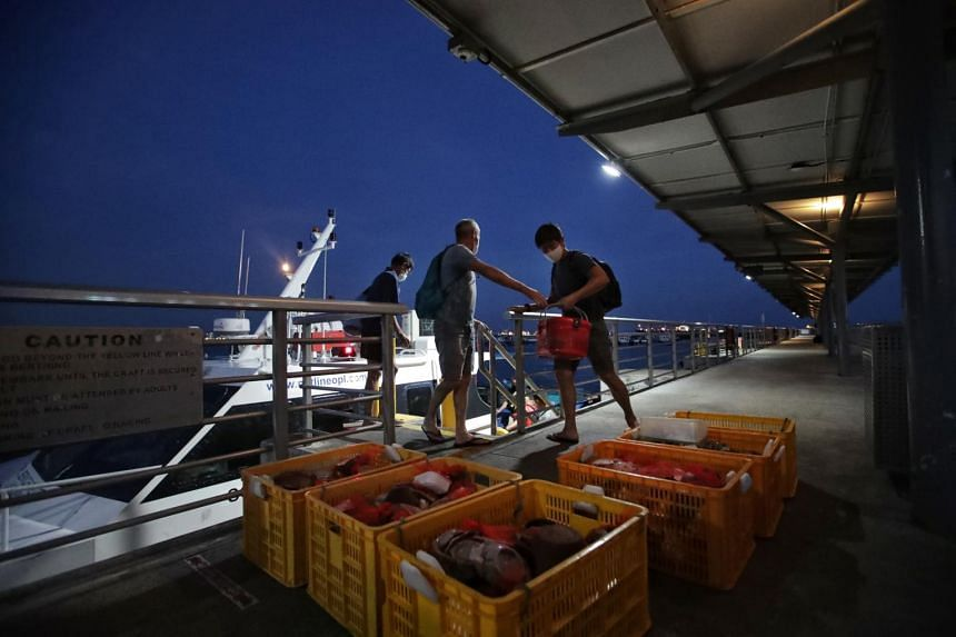 After a long day's work, the team returns to Marina South Pier after dark on May 22, carrying the day's haul with them. The artefacts are then taken to a secured facility for processing.