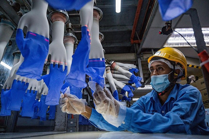 """A worker inspecting disposable gloves at a Top Glove factory in Shah Alam, Kuala Lumpur, last August. The United States Customs and Border Protection had issued a detention and withhold release order against Top Glove last July based on """"reasonable b"""