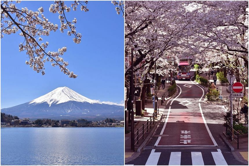 With virtual travel, a two-week itinerary of Japan's tourist hot spots can now be done in a weekend.