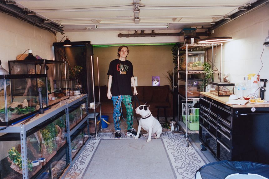 YouTuber Tomas Pasiecznik with his English bull terrier, Zed, at his parents' home in New Jersey, on June 5, 2021.