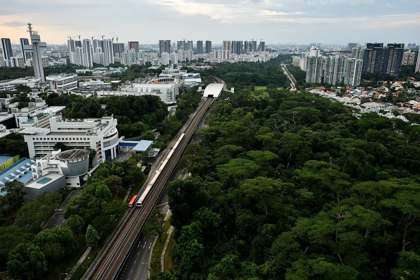 In recent months, there have been calls for the conservation of green plots such as the Clementi and Dover forests.