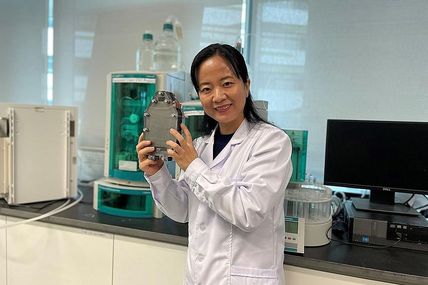 Associate Professor Yang Hui Ying, who is leading a research team from the Singapore University of Technology and Design, with a desalination battery. Desalination entails the removal of salts from seawater. The desalination battery separates them th