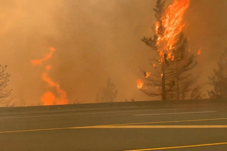 Trees burn along a street during a wildfire in Lytton, Canada, on June 30, 2021.