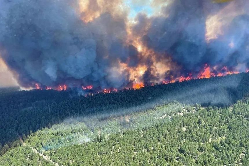 The Sparks Lake wildfire, in British Columbia, seen from the air, on June 29, 2021.