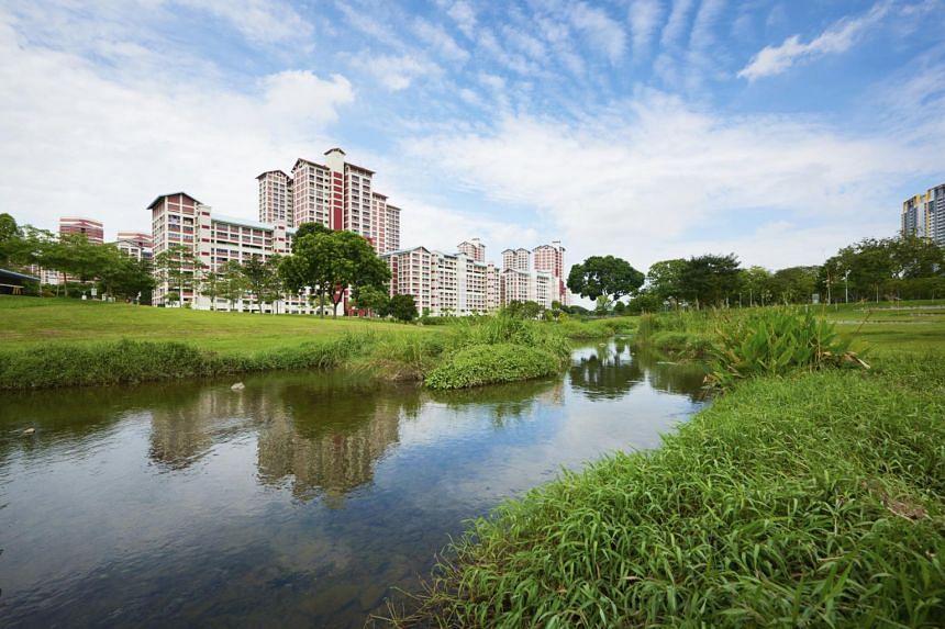 The Kallang River at Bishan-Ang Mo Kio Park was rejuvenated in 2012.
