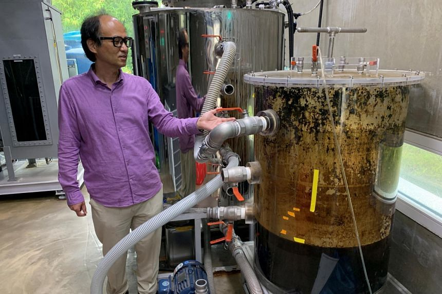 Dr Cho Jae-weon next to a faeces tank at a laboratory in Ulsan, South Korea on July 6, 2021.