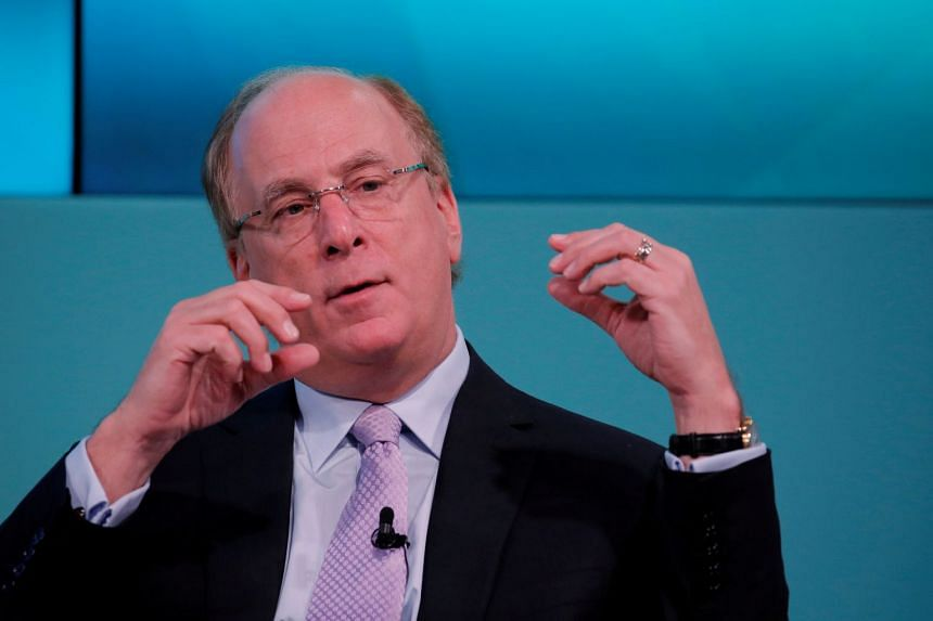 Larry Fink also called for reform of the IMF and the World Bank to make them more suited to tackle the challenge of climate change.