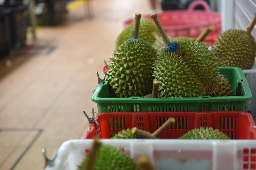 The Singapore Food Agency says that no safety violations have been detected in their tests on artificially ripened durians.