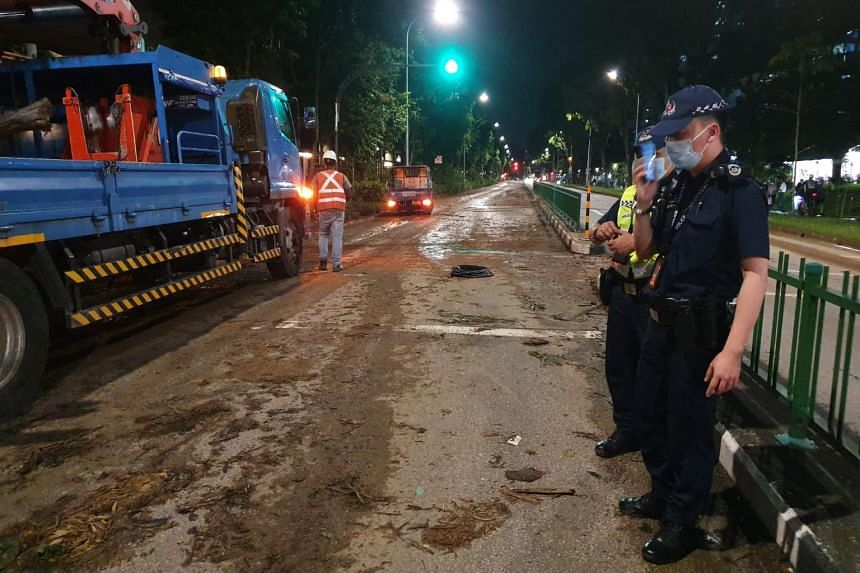 Traffic had to be diverted from Bukit Batok West Avenue 5 and an NParks contractor removed the tree trunk within one and a half hours.