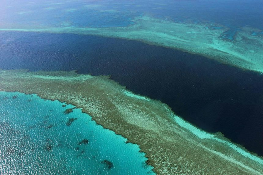 The United Nations cultural agency had recommended that the Great Barrier Reef be placed on its endangered list.