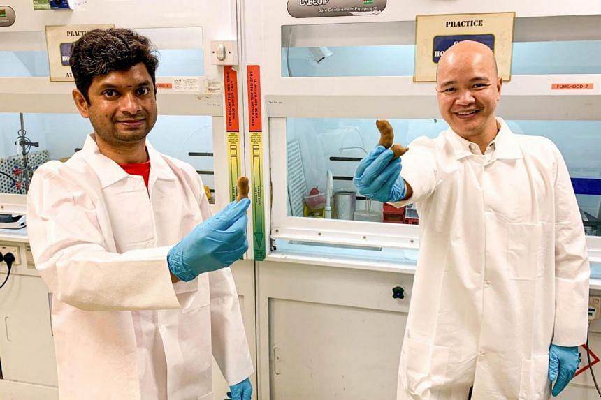 NTU senior research fellow Thambidurai Mariyappan (left) and Assistant Professor Steve Cuong Dang with tamarind pods.