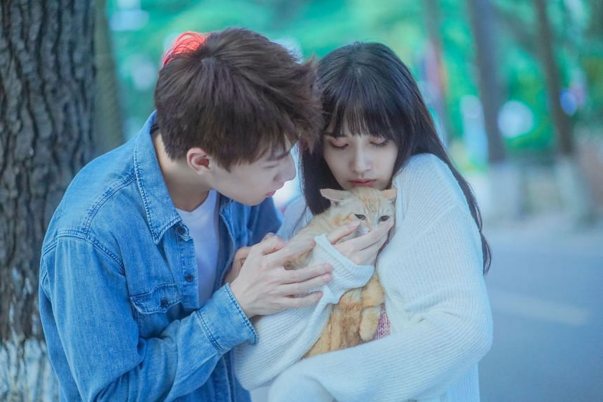 Ren Youlun (left) and Gia Ge play a human and a female cat spirit in the romantic series Make A Wish.