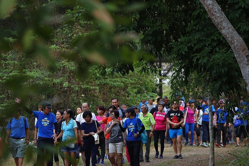 Participants of the Silver Challenge on a walk at Tampines Eco Green in 2019. The HPB's lapses pertained to the National Steps Challenge seasons 1 to 5, which ended between one and five years prior to the audit. The AGO's checks found an excess of 26