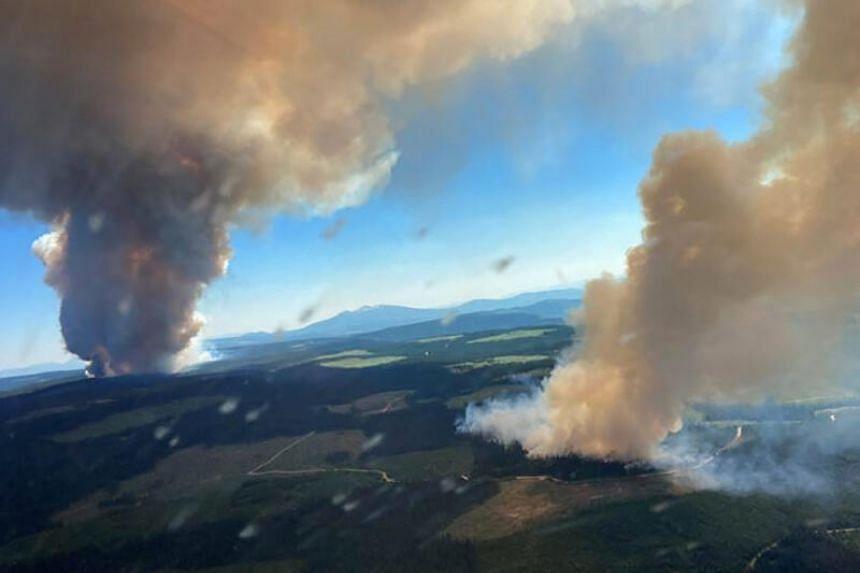 The heatwave that ravaged British Columbia saw temperatures hit 49.6 degrees Celsius.