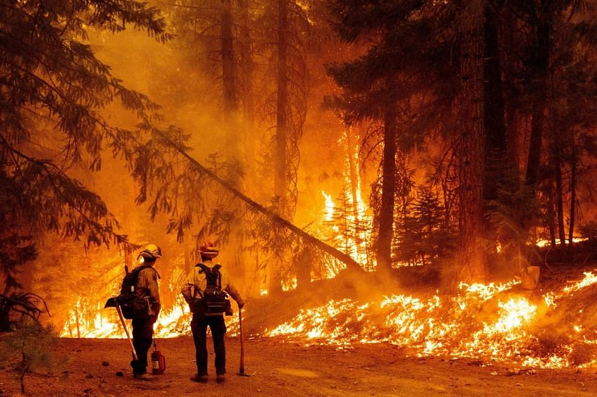 Firefighters monitor a backfire they lit to stop the spread of the Dixie fire in the Prattville community of Plumas County, California, on July 23, 2021.