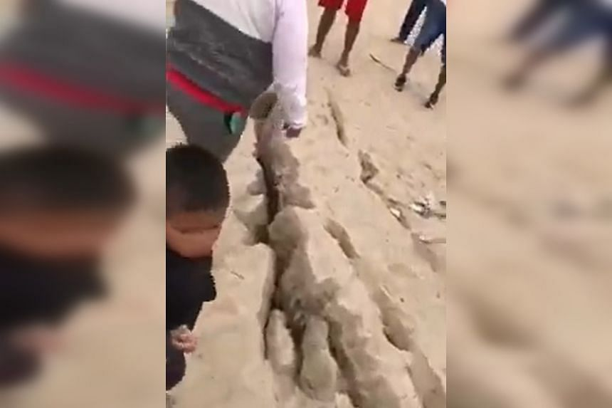A screenshot from a video posted online shows people in Peru inspecting a crack which opened up during the quake.
