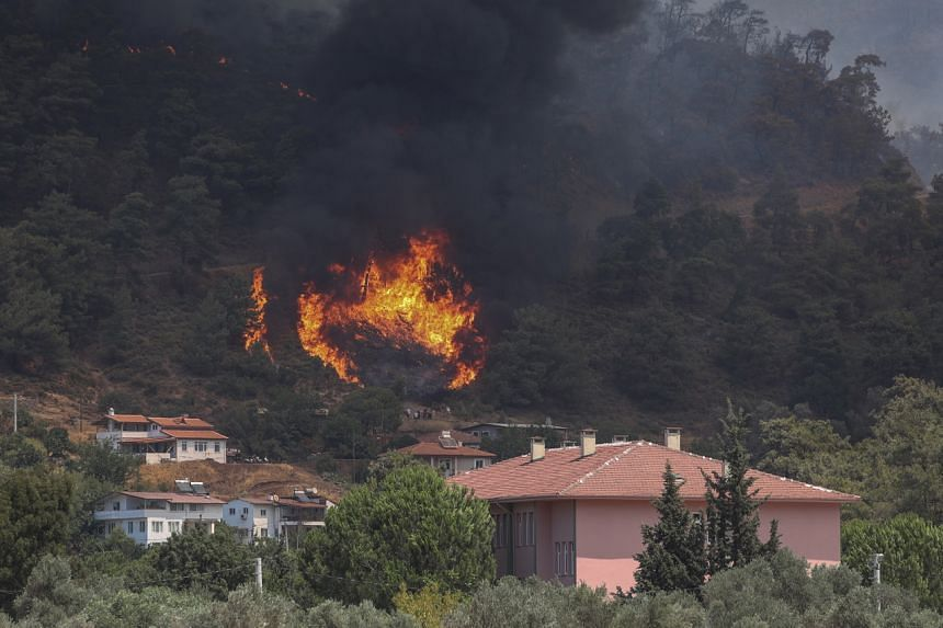 Turkey is suffering through its worst fires in at least a decade with nearly 95,000 hectares burnt so far this year.