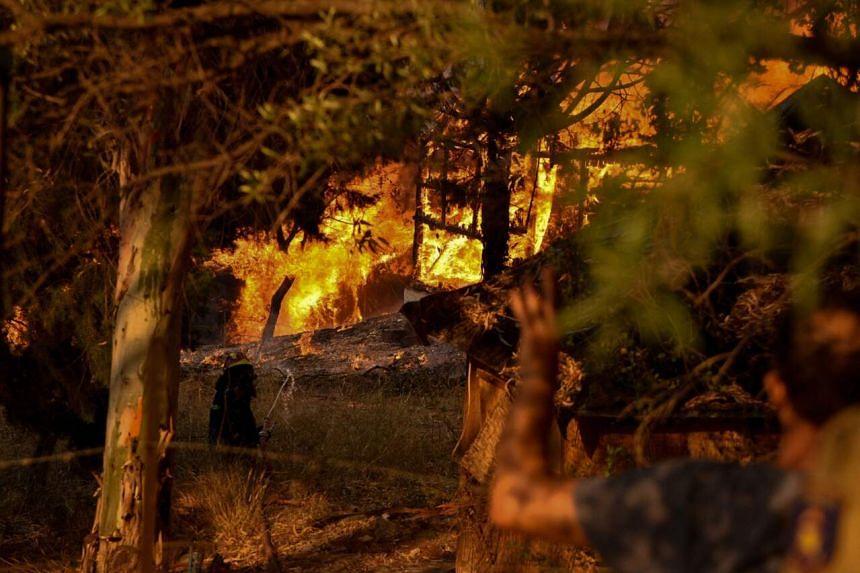 Firefighters work on a wildfire, in Labiri, near Patras, on July 31, 2021.