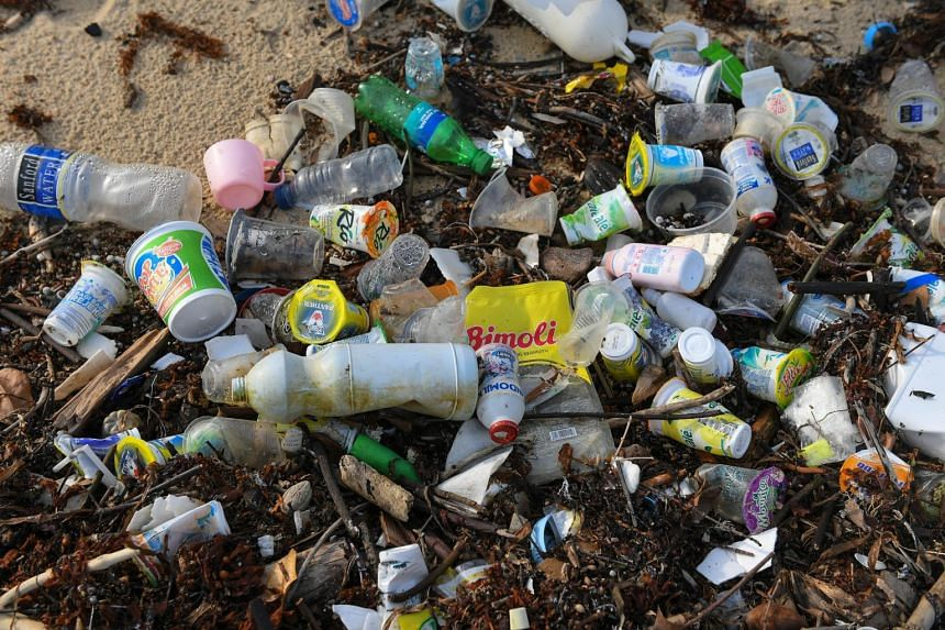 In the previous two years, NEA cleared an average of about 3,500 tonnes of marine debris a year from Singapore's beaches.