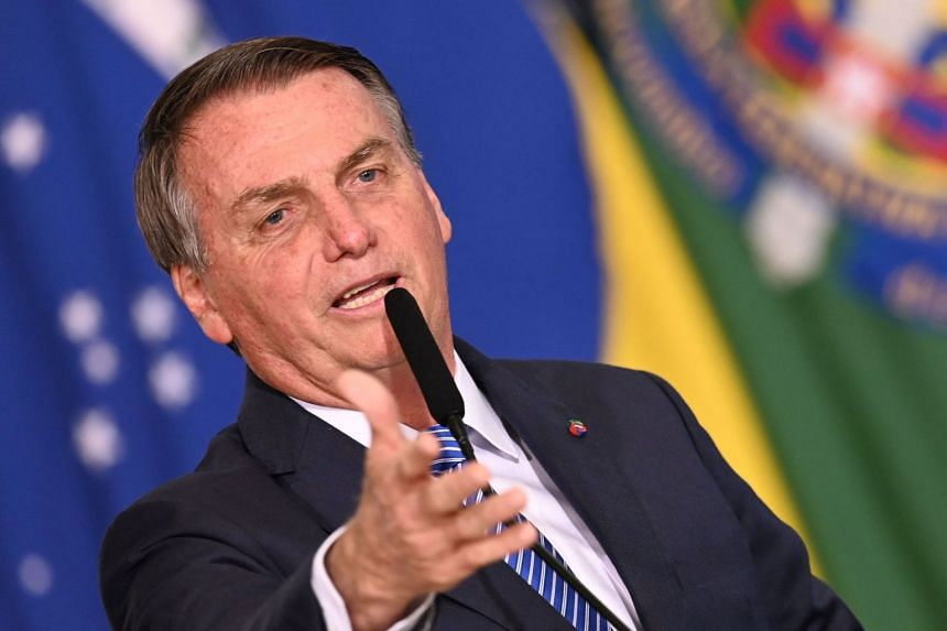 Bolsonaro (above) was added to an ongoing probe on the spread of fake news by his government.