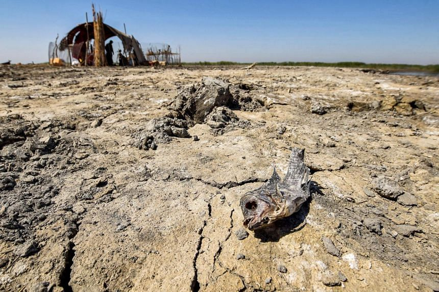 Major advances in palaeoclimatology have delivered sobering warnings.