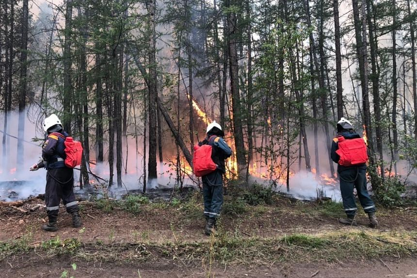 This week Russia launched a national response centre and deployed additional firefighters to battle the devastating Siberian fires.