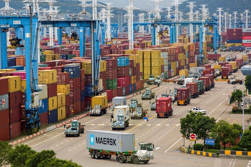 Lines of trucks at a container terminal in Ningbo Zhoushan port, China, on Aug 15, 2021.