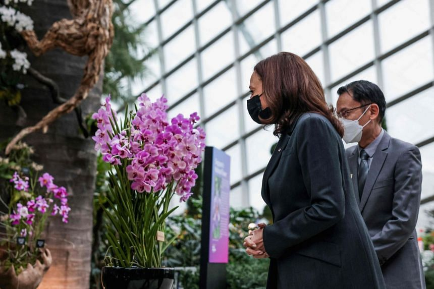 US Vice-President Kamala Harris, accompanied by Gardens by the Bay chief executive Felix Loh, visits the orchid that was named after her, at the Flower Dome at Gardens by the Bay, on Aug 24, 2021.