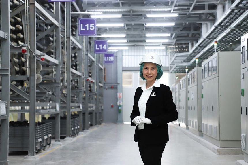 Sri Trang Gloves CEO Jarinya Jirojkul said global demand for latex and nitrile gloves has risen very rapidly.