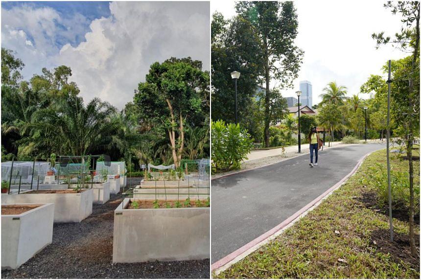 Allotment garden at West Coast Park (left) and Pasir Panjang Park featuring sand and coastal trees.