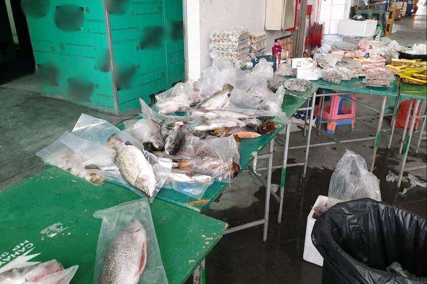 Further investigations found that the company was storing meat and seafood in an unlicensed cold store.