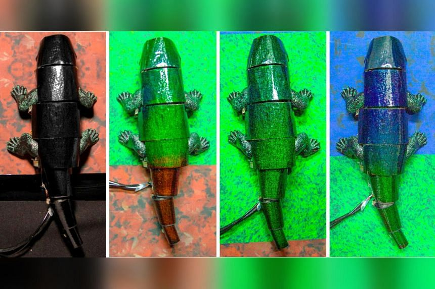 In a video, a robot with colour-detecting sensors crawled over red, blue and green floors, instantly changing colour to match the background.