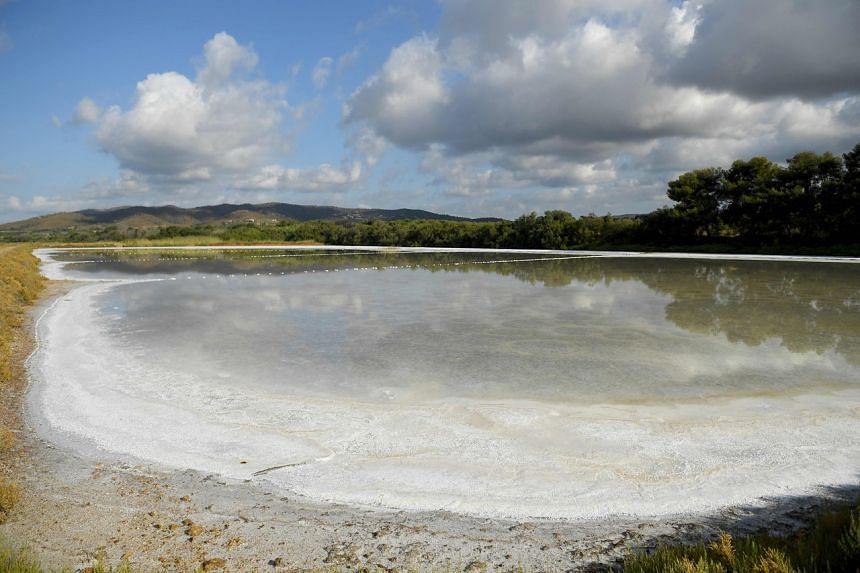 The Vieux-Salins d'Hyeres salt marshes sit just below sea level.