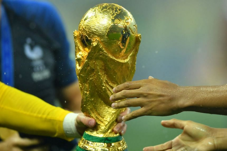 Several regions have voiced their concern at a proposal by world football governing body Fifa to hold the World Cup every two years.