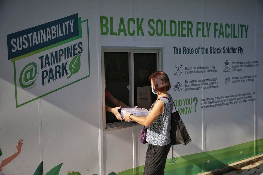 A resident dropping off a box of food waste at the black soldier fly facility at the Sustainability@Tampines Park on Sept 9, 2021.