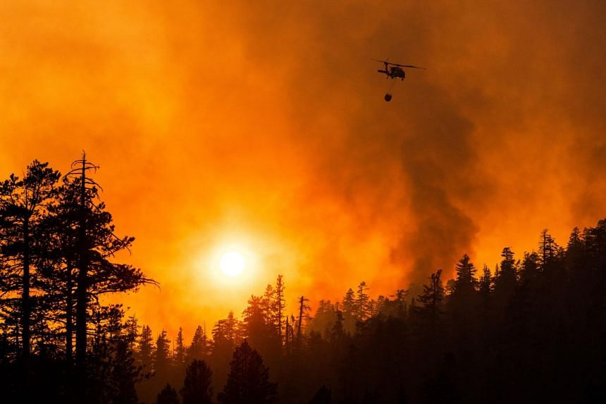 A helicopter drops water on a spot fire while battling the Caldor fire near Silver Lake in California on Sept 3, 2021.