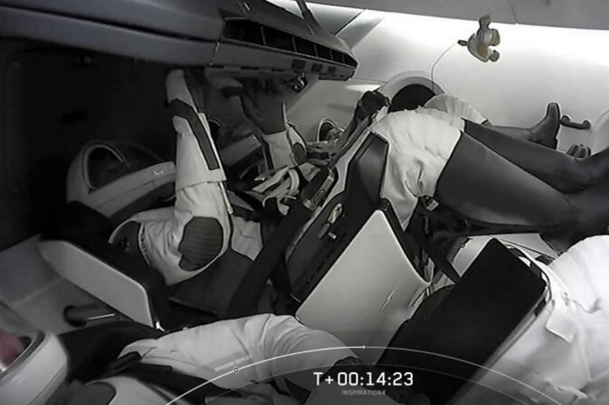 A screengrab from the SpaceX live webcast shows a plush dog floating in the capsule.