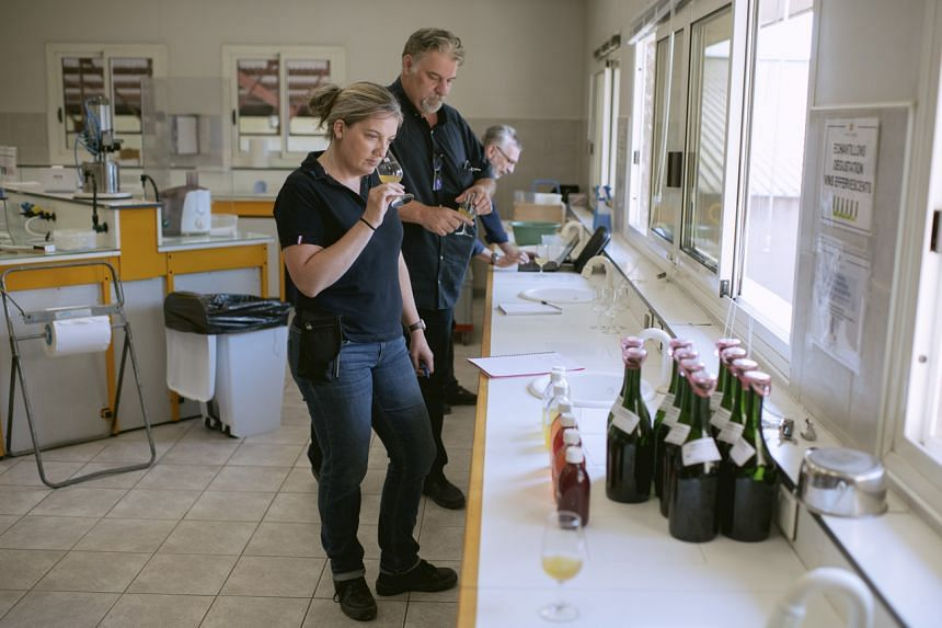 Helene Barre, an oenologist, tastes new season wine at a cooperative in Limoux, France, on Aug 27, 2021.